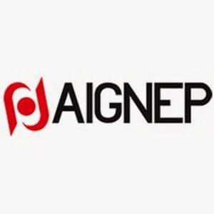 aignep_logo