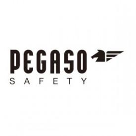logo_pegaso_safety